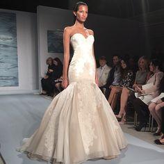 Gown by Mark Zunino