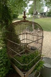 1000 images about cage oiseau ancienne on pinterest bird cages brocante and birdcages. Black Bedroom Furniture Sets. Home Design Ideas