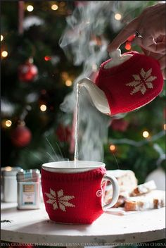 Christmas Tea - The teapot and tea cup are wearing little knitted ''sweaters'' :) - Photography by Larysa Charnakal
