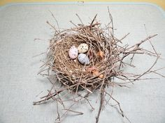 Vintage Bird Nest Mother Nature Decor