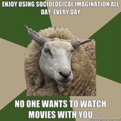 Social Imagination // Sociology // Sheep // Funny