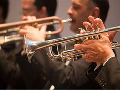 O documentário mostra a rotina de trabalho, ensaios, apresentações e singularidades da orquestra Jazz Sinfônica de São Paulo e o maestro Cyro Pereira, fundador e principal arranjador da orquestra, que faleceu em 2011, aos 82 anos.