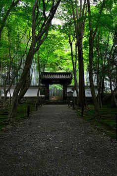 竹の寺 地蔵院 : ちょっとそこまで