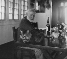 Hemingway. Idaho proud. the only reason I'd own a cat is to be closer to Hemingway