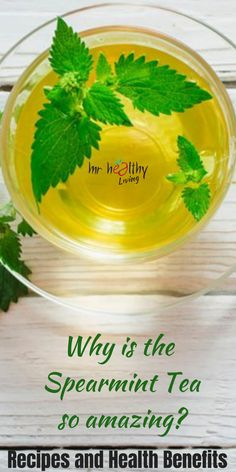 Why is the Spearmint Tea so amazing? Recipes and health benefits Spearmint Recipes, Spearmint Tea, Tea Benefits, Health Benefits, How To Make Tea, Tea Recipes, Pcos, Healthy Drinks, Health And Wellness