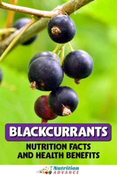 Black currants - what do they offer nutritionally? And what are they? This article looks at the potential health benefits of black currants, their nutritional values, and how to use them. #blackcurrant #berries #fruit #nutrition