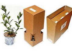 Plant flower packaging