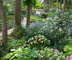 20 Shade Garden Design Ideas That Prove You Can Grow Colorful Plants Anywhere