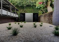 A charred timber pavilion with deceptively curved walls