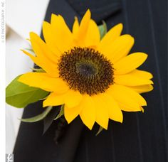 sunflower boutonniere | Check in later today for a Sunflower Weekend Wedding and don't forget ...