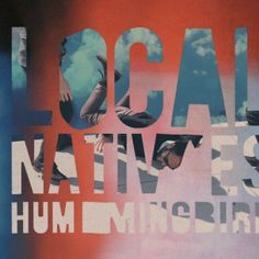 Humming Bird - Local Natives