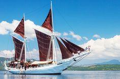 Seatrek Sailing Adventures - Indonesia Phinisi Cruise