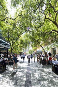 Pitt Street Mall Public Domain - Sydney Design Awards 2013