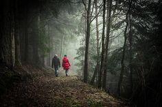 Heilsame Natur: Nur fünf Minuten im Wald stärken Ihr Selbstbewusstsein! Lesen Sie zu diesem Thema den Beitrag hier: http://der-seniorenblog.de/senioren-news-2senioren-nachrichten/ . Bild: CC0