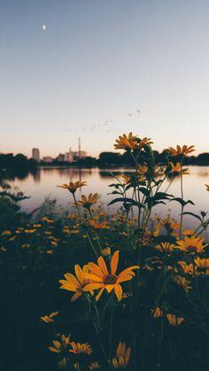 Sunset over Silver Lake in Rochester, MN @exploreminn #OnlyInMN