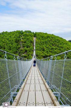 Tagesausflug zu Deutschlands längster Hängeseilbrücke - Geierlay im Hunsrück (Mörsdorf)