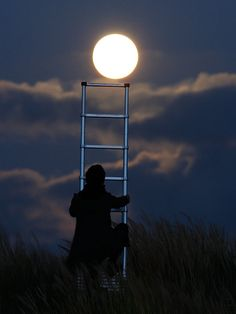 Moon games...reach for the moon...