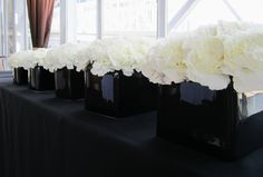 white carnations; design by Davis Floral Creations