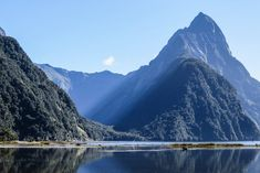 Mitre Peak, , Milford Sound tours and Milford Sound cruise from Te Anau New Zealand Travel Guide, Visit New Zealand, New Zealand South Island, Milford Sound, Te Anau, Travel Goals, Landscape Paintings, Cruise, Places To Visit