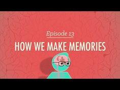 1. Miután első alkalommal megnézted a videót, mi mindent sikerült megjegyezned a memóriáról? Meséld el társaidnak, akik ki is egészíthetnek más információkkal. Ezáltal együtt alakíthatjuk ki tudásunkat az emlékezetről.