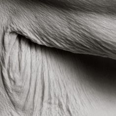 Photographer Anatasia Pottinger was lucky enough to have been approached by a 101-year old woman who wanted to model nude for her. The result of this collaboration is 'Centenarians', a nude photo series that explores the aging human body and its mortality. Through the black and white images, Pottinger takes us through the tiny details […]