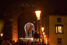 I personally think the highlight  of Durham Lumiere 2013 was this magnificent 3D projection of an elephant which appeared to be walking across Elvet Bridge.