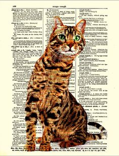 Dictionary art bengal cat print £6.52 @Jamie it's rigby!