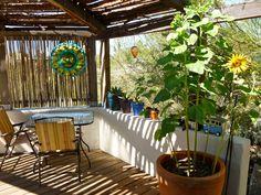 Nicole's adobe house in Tucson, Arizona