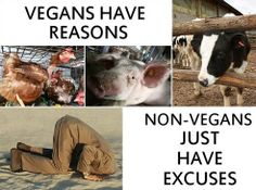 Vegans have reasons - Non-vegans just have excuses