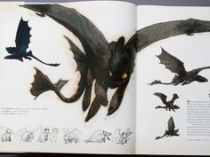The Art of How To Train Your Dragon art book