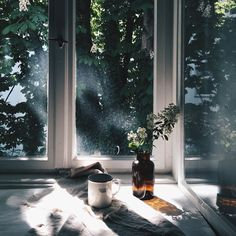 ღღ Ana Rosa, grace–upon–grace: Saskia Bauermeister Through The Window, Window View, Morning Light, Light And Shadow, Land Scape, Interior And Exterior, Photos, Pictures, Photographs