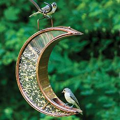 Moon Bird Feeder