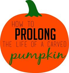 How to prolong the life of a carved pumpkin.  |  All Things Thrifty