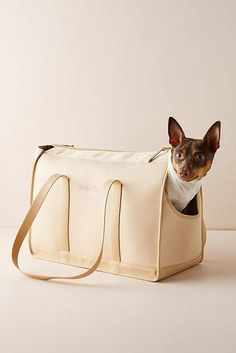 Wild One Dog Carrier by in Beige, Stationery at Anthropologie Dog Backpack, Dog Bag, Cute Dog Clothes, Dog Carrier, Dog Travel, Dog Birthday, Pet Carriers, Wild Ones, Dog Supplies