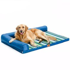 Now selling: Ultimate All Seasons Striped Couch Style Headrest Edition Pillow Top Orthopedic Pet Bed for Dogs and Cats http://dogtrunk.com/products/hoopet-ultimate-all-seasons-striped-couch-style-headrest-edition-pillow-top-orthopedic-pet-bed-for-dogs-and-cats?utm_campaign=crowdfire&utm_content=crowdfire&utm_medium=social&utm_source=pinterest