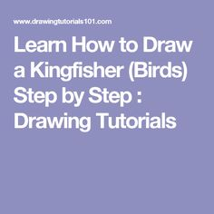 Learn How to Draw a Kingfisher (Birds) Step by Step : Drawing Tutorials