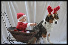 #IDEA FOR A BABY CHRISTMAS PORTRAIT - #Baby & Doggy Reindeer very cute - babys best friend....notice - simple sheet behind...find something sleighish even a cute chair - and giddy up Rudoph-#amazing memories baby idea portrait