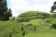 Sheep in the Shire.