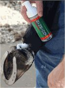 Synboint Animal Wound Care |Synbiont Small Animal Wound Care