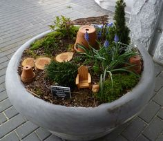 Leprechaun Garden in a pot in front of our Visitor Center