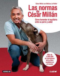 Melvin El trabajo Labrador Perro Acrílico Espejo