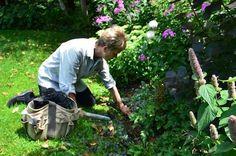 kneeling to garden - Google Search