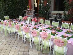 pink ladybugs birthday party ideas