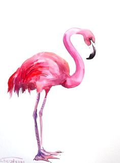 Flamingo, ortiginal watercolor painting, 12 X 9 in, flamingo art pink on Etsy, $191.08 HKD