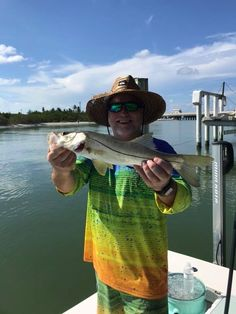 Some #snook from Saturday #fishing BLfishing.com. #captainkeith #swflorida #sanibel #pineisland #bluelinefishingcharters Pine Island, Fishing Charters, Blue Line