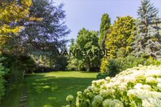 Opulent greenings in a private garden in Vienna. Old Trees, Classic Interior, Private Garden, Terraces, Luxury Real Estate, Vienna, Beautiful Gardens, Oasis, Luxury Homes