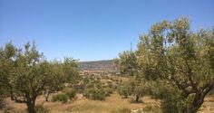 Una settimana con il Nokia Lumia nella terra di #Montalbano  #Ragusa