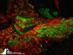 Fluorescent minerals in the Sterling Hill Mining Museum in Ogdensburg, NJ, a former iron and zinc mine. Mining began as early as 1730 and was the last working underground mine in NJ when it closed in 1986. Along with the nearby Franklin Mine, it is known for its variety of minerals, especially the fluorescent varieties. There are 35 miles of tunnels, going down to 2,065 feet. The site was added to the NJ Register of Historic Places in 1991. Discover more @ www.thehistorygirl.com