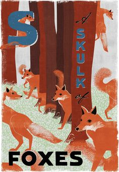 S - a Skulk of Foxes