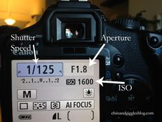 Shutter speed,  aperture,  and iso
